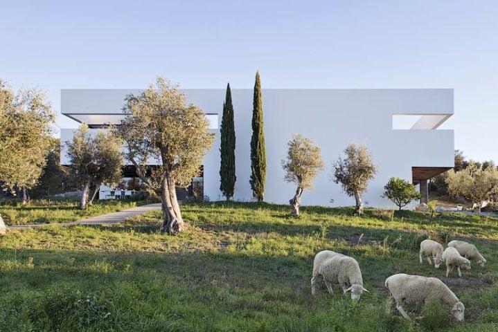 Villa Extramuros — Villa Extramuros