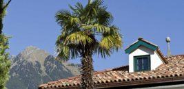 Ottmanngut, Meran, South Tyrol, Italy