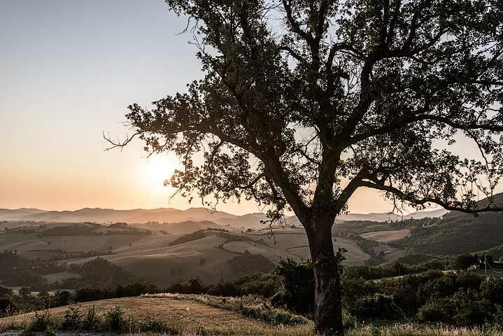 Malatesta Maison — Marche landscape