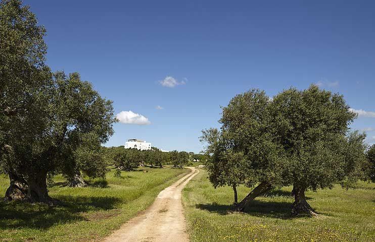 Masseria Petrarolo — Masseria Petrarolo