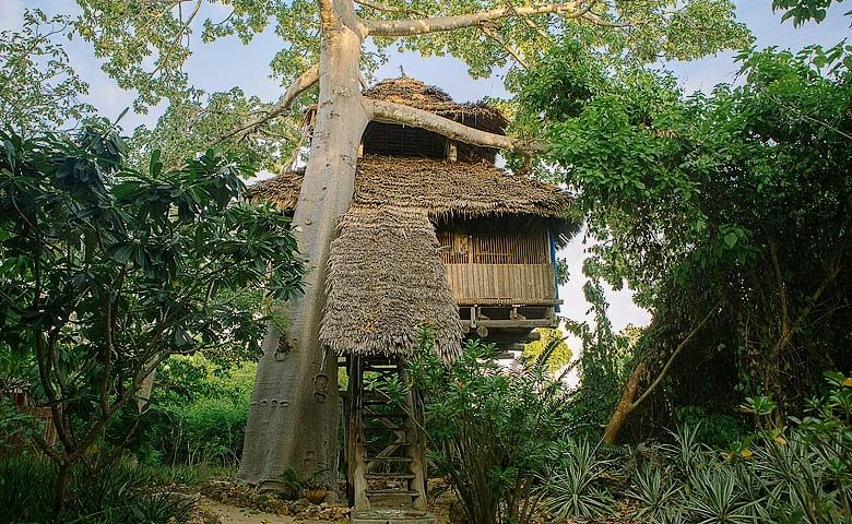 Chole Mjini — Chole Mjini treehouse