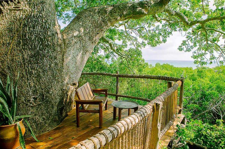 Chole Mjini — Treehouse view