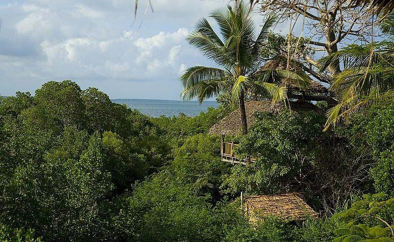 Chole Mjini — Treehouse