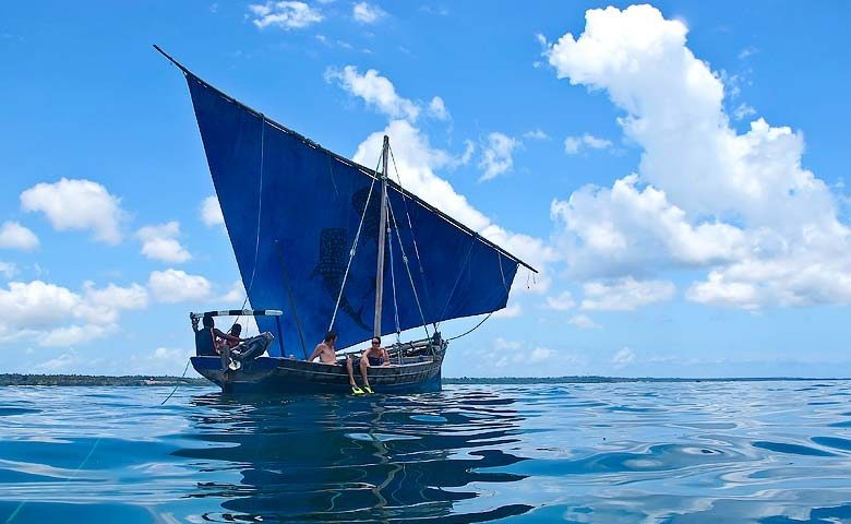 Chole Mjini — Whale shark diving