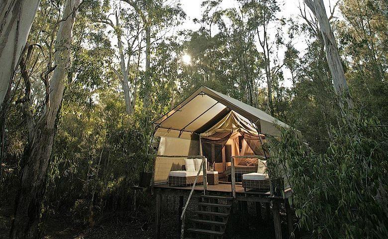 Paperbark Camp — Paperbark Camp Deluxe Safari Tent
