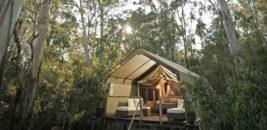 Paperbark Camp, Woollamia, New South Wales, Australia