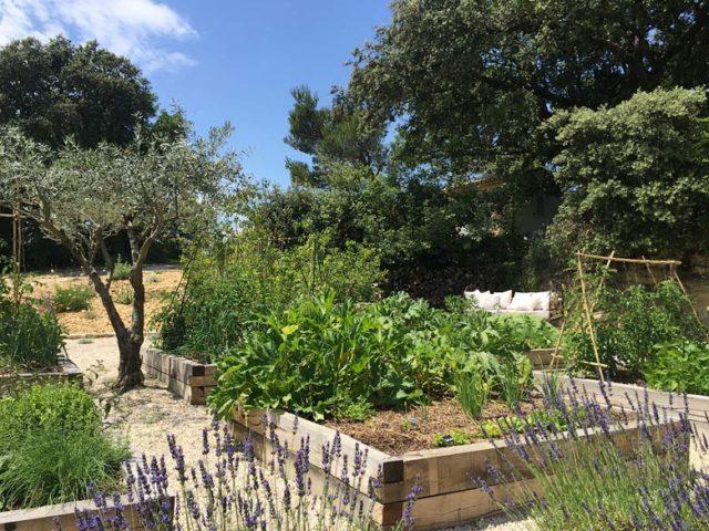 Ferme du Vigneron — Vegetable garden