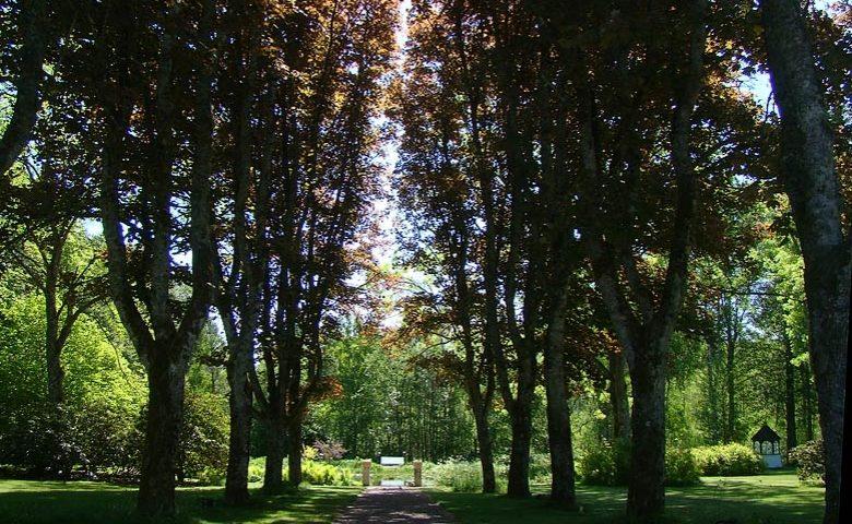 Småland Manor — Garden