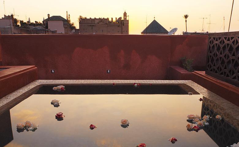 P'tit Habibi — P'tit Habibi rooftop pool