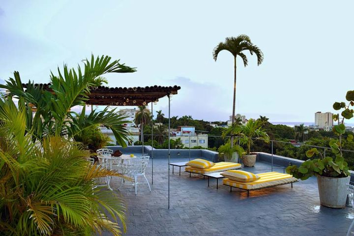 Paseo Penthouse — Rooftop terrace