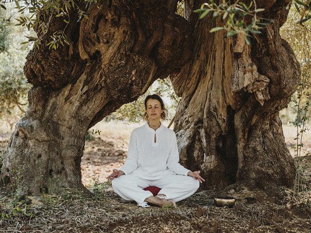 Masseria Dagilupi — Meditation under the millinery olive trees
